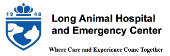 Charlotte NC Veterinarian, Charlotte NC Animal Hospital